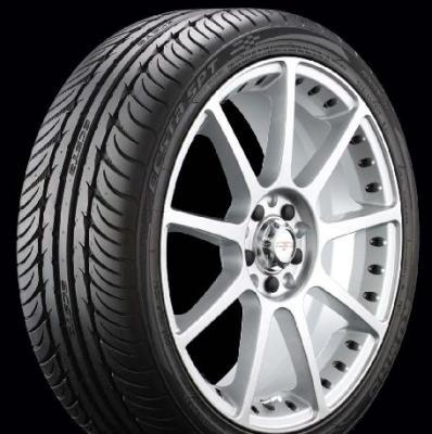 Ecsta SPT Tires